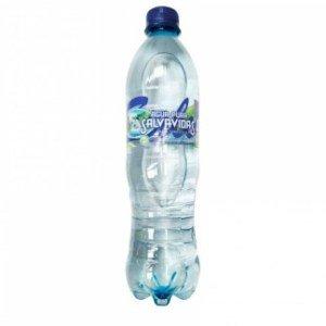 agua pura botella 600 ml